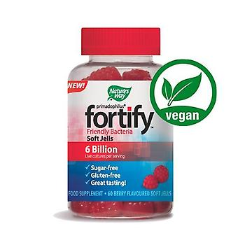 Nature's Way Primadophilus Fortify Friendly Bacteria Soft Jells Berry Flavour 60