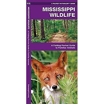 Mississippi Wildlife: An Introduction to Familiar Species (Pocket Naturalist Guides)