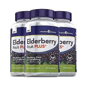 Elderberry Fruit Plus Elderberry hedelmä uute 600mg (5% Flavanoid)-180 kapselit-Evolution laihtumiseen
