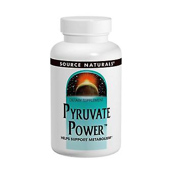 Source Naturals Pyruvate Power, 750 MG, 60 Caps