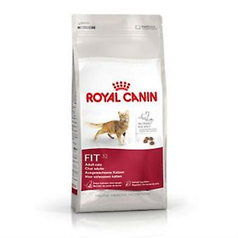Royal Canin aliments pour chats complets adulte Fit 32 (10kg)