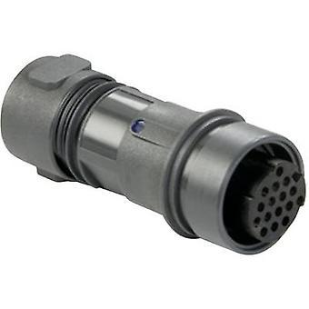 Bulgin PXP6011/02S/ST Bullet connector Plug, straight Series (connectors): PXP Total number of pins: 2 1 pc(s)
