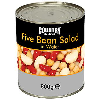 Country Range Five Bean Salad in Water