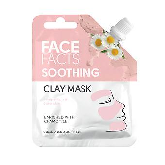 Face Facts Clay Face Mask ~ Soothing