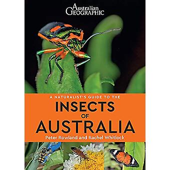 A A Naturalist's Guide to the Insects of Australia by Peter Rowland -