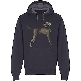 صورة من Weimaraner الكلب هودي الرجال و apos ق -الصورة من قبل Shutterstock