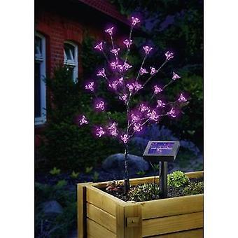 Esotec Solar decorative light Arbuste 102104 Flowering shrub LED (monochrome) 0.6 W Pink Anthracite