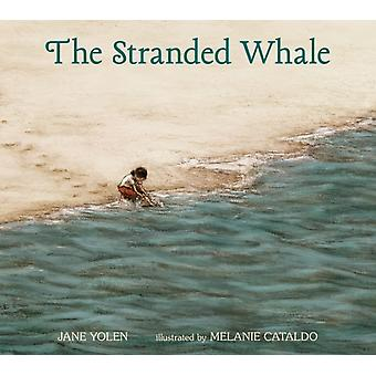The Stranded Whale by Jane Yolen & Illustrated by Melanie Cataldo
