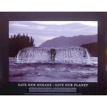 Save Our Oceans Save Our Planet Poster Print by Bob Talbot (31 x 24)