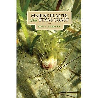 Marina växter av Texas kust (Harte Research Institute för mexikanska studier-serien)