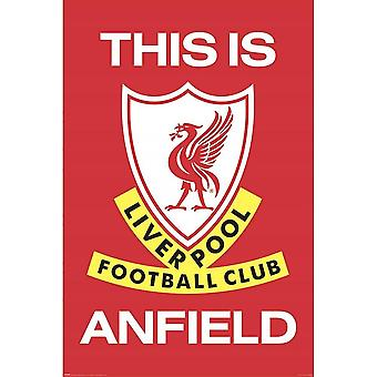 Liverpool FC, Maxi Poster - This is Anfield