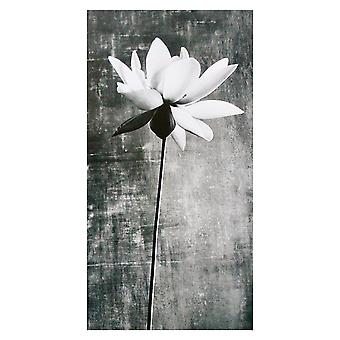 Hallmark White Lily With Sympathy Bereavement Card 11372408
