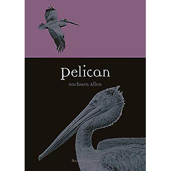 Pelican by Barbara Allen - 9781789140750 Book