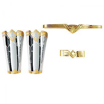 Wonder Woman Adult Accessories Tiara, Gauntlets, and Armband Kit
