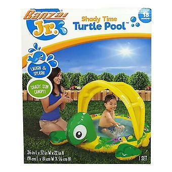 Árkos idő Turtle Pool