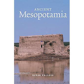 Oude Mesopotamië door Susan Pollock