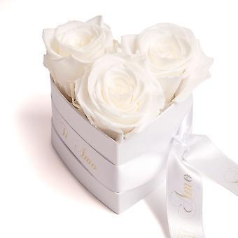 Ti Amo Roses Heart Box 3 eviga rosor i vit hållbarhet 3 år