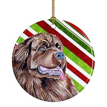 Bastón de caramelo de Newfoundland vacaciones Navidad adorno cerámica LH9219