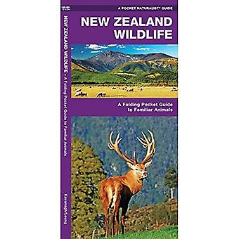 New Zealand Wildlife: A Folding Pocket Guide to Familiar Animals (Pocket Naturalist Guide)