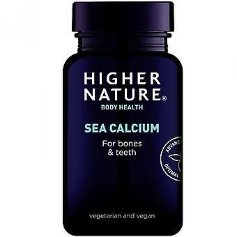 Hogere natuur zee calcium vegetarische tabletten 180 (SEA180)