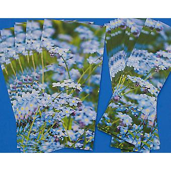 Cracker Wraps & Ties for 8 Crackers - Forget Me Not Wide