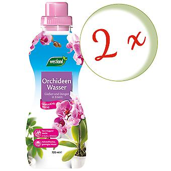 Disperso: 2 x WESTLAND® Orchids Water, 720 ml
