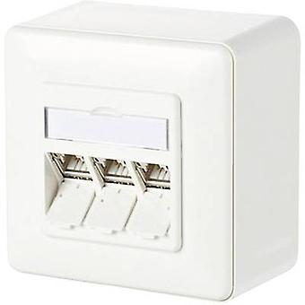 Metz Connect Network outlet Surface-mount CAT 6A 3 ports Pure white