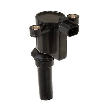 Delphi GN10300 Ignition Coil