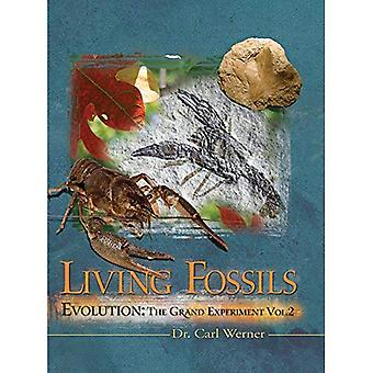 Living Fossils: 2 (Evolution: The Grand Experiment)