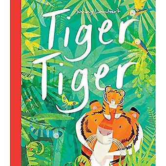 Tiger Tiger (Taschenbuch)
