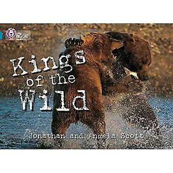 Kings of the Wild: Band 13/Topaz fase 5, Bk. 11 (Collins Big Cat)