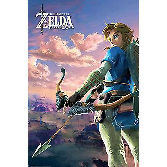 Zelda Breath Of The Wild Hyrule Scene Paysage Affiche Maxi