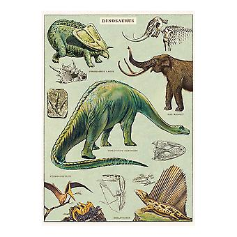Cavallini Dinosaur Wrapping Paper / Poster High Quality / Decoupage