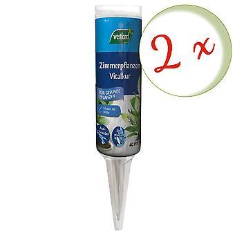 Sparset: 2 x WESTLAND® Houseplants Vital Cure, 40 ml