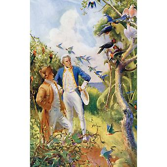 Captain James Cook And Botanist Joseph Banks Examining The Wild Life And Flora In Botany Bay Australia From The Life And Voyages Of Captain James Cook By CG Cash Published Circa 1910 PosterPrint