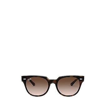 Ray-Ban RB4368N havana unisex sunglasses