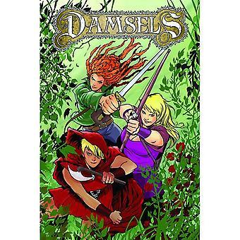 Damsels Volume 1 by Leah Moore, John Reppion (Paperback, 2017)