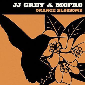 JJ Grey & Mofro - importation USA oranger [CD]