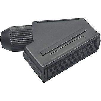 BKL sähköisen 0903014 SCART-liitin pistorasia, kulmassa nastojen määrä: 21 musta 1 PCs()
