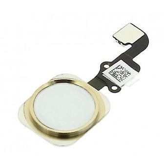 Stuff Certified® dla Apple iPhone 6/6 Plus - A + Home Button Flex Cable Assembly with Gold