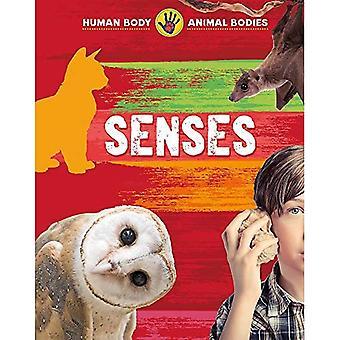 Human Body, Animal Bodies: Senses (Human Body, Animal Bodies)