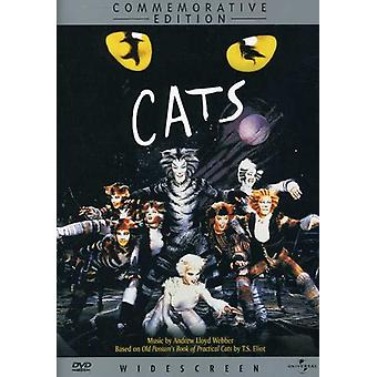 Cats - Cats [DVD] USA import