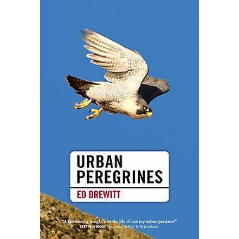 Urban Peregrines by Ed Drewitt - 9781907807817 Book