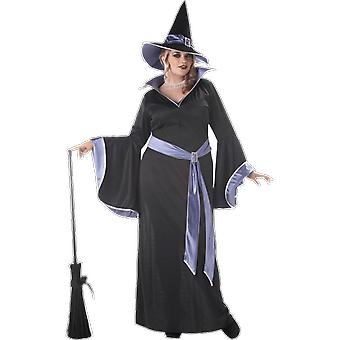 Womens Glamour Witch Plus Size Halloween Books & Film Fancy Dress Costume