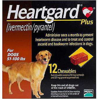 Heartgard Plus For Dogs 23-45kg (51-100 lbs) - 12 Chewables