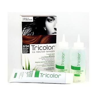 Tricolor hair color - Dark Golden Blonde 6/34 80 ml