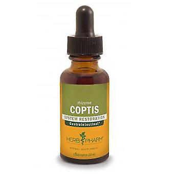 Herb Pharm Coptis Extrait, 1 Oz