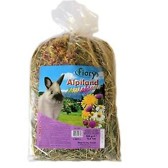 Fiory Foin Alpiland avec Multi-fleurs pour Rongeurs (Rongeurs , Foin)