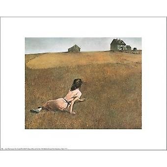 Christinas World Poster Print by Andrew Wyeth (20 x 16)