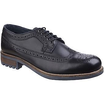 Cotswold Mens Poplar Lightweight Wing-Tip Brogue Oxford Dress Shoes